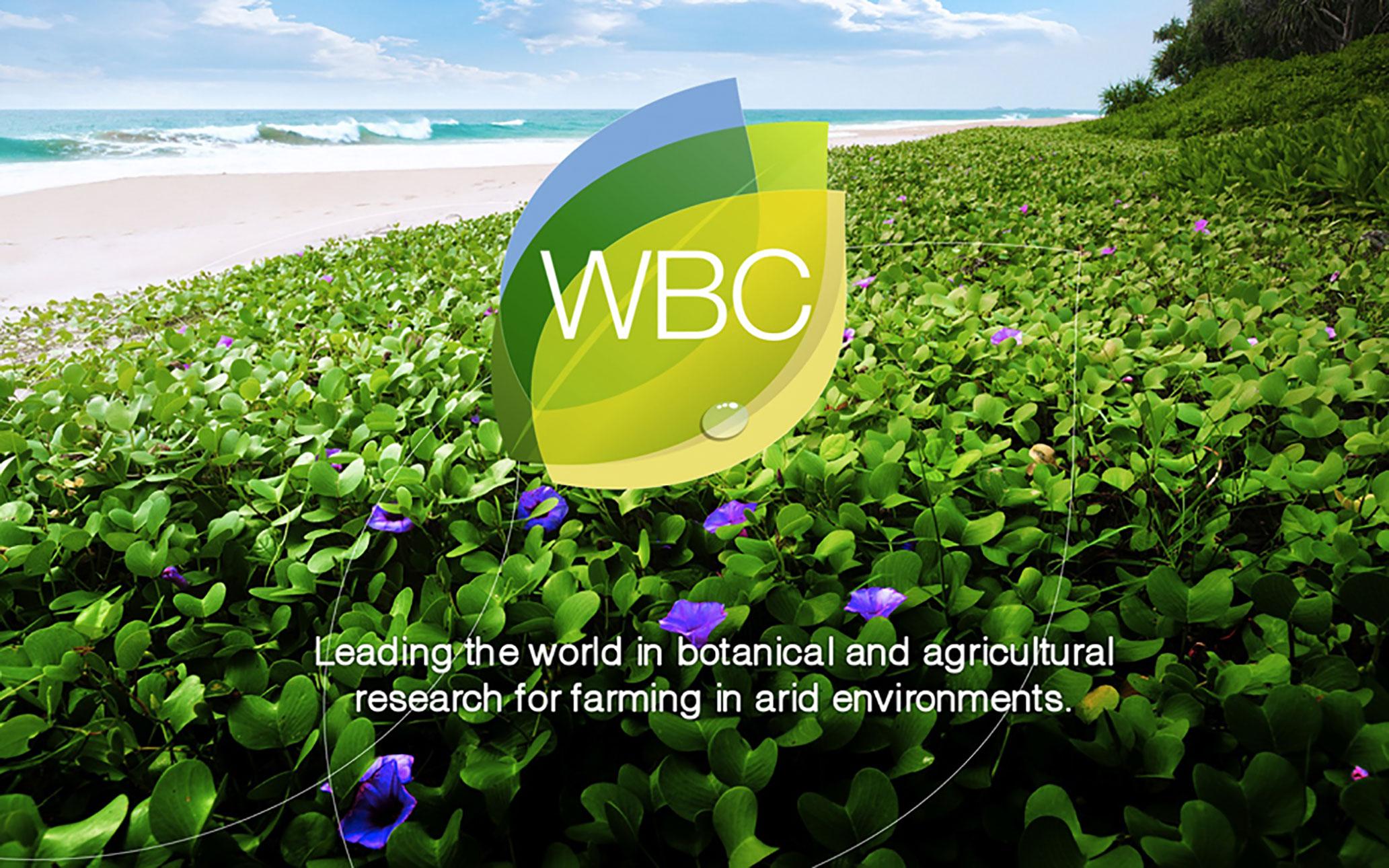 WBC_02